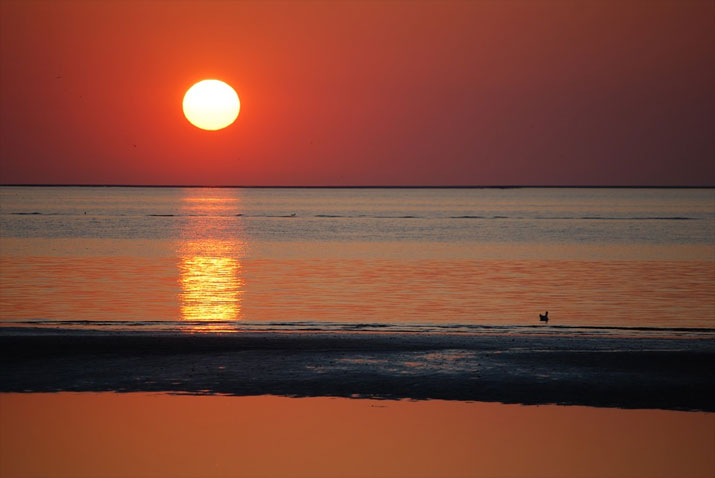 Sonnenuntergang an der Küste von Zeeland