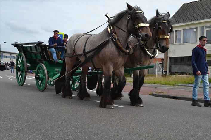 Pferdekutsche, Zeeland