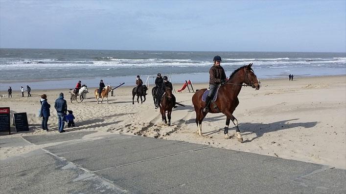 Reiturlaub in Zeeland